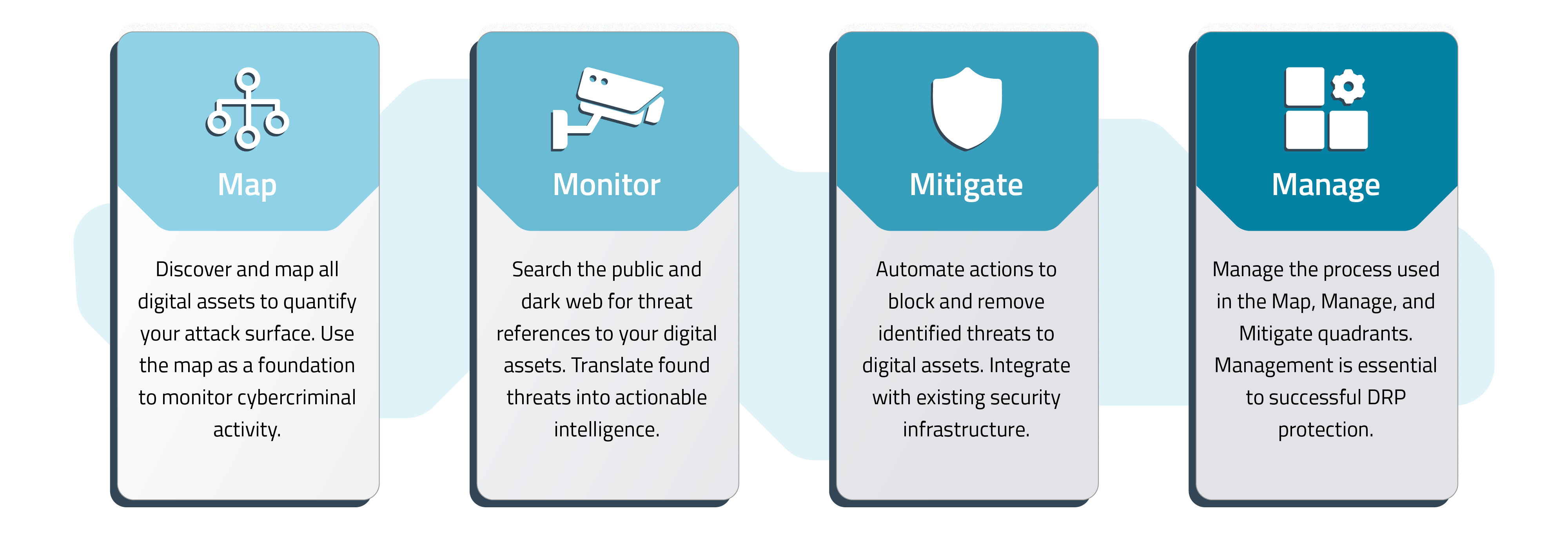 What is Digital Risk Protection